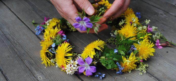 flower-1467550_1920
